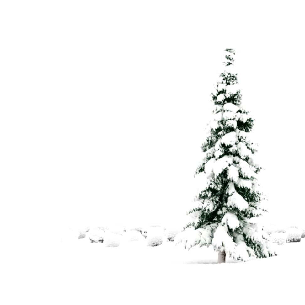 White Christmas Snow Background.White Christmas Wallpapers Top Free White Christmas