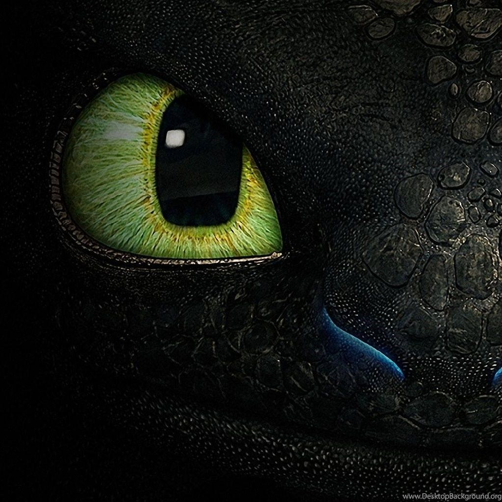 Toothless Wallpapers Top Free Toothless Backgrounds