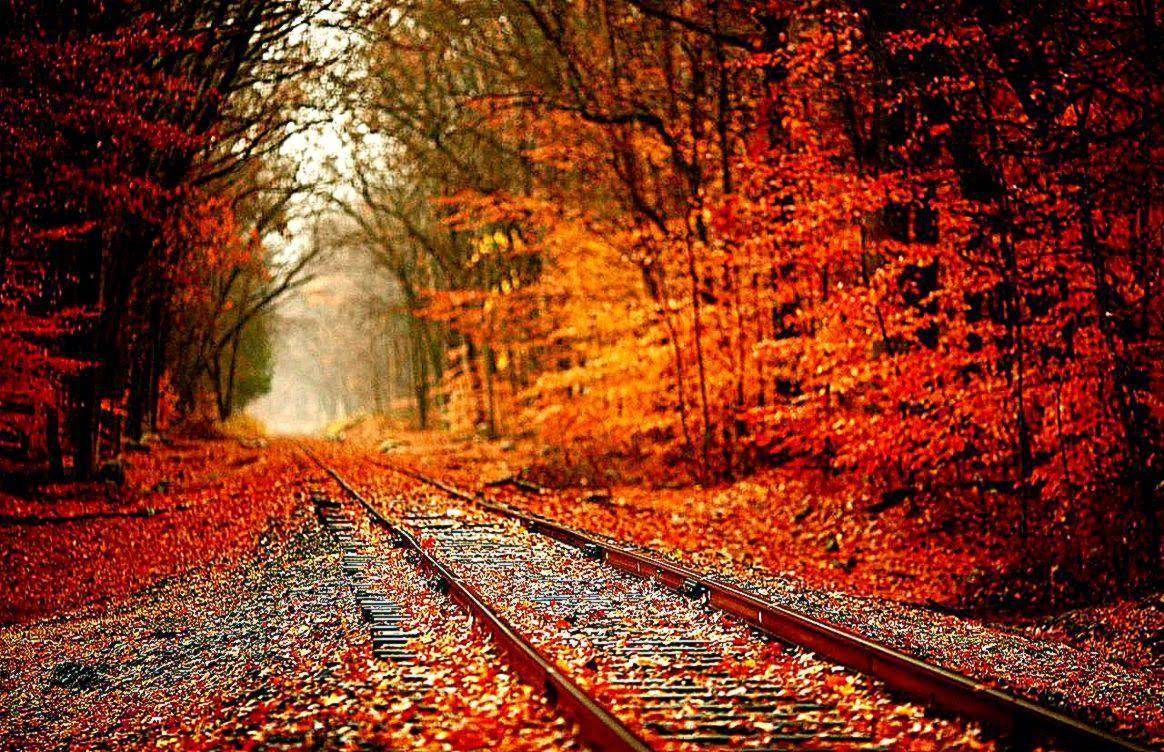 Cozy Aesthetic Tumblr Autumn Autumn Iphone Wallpaper