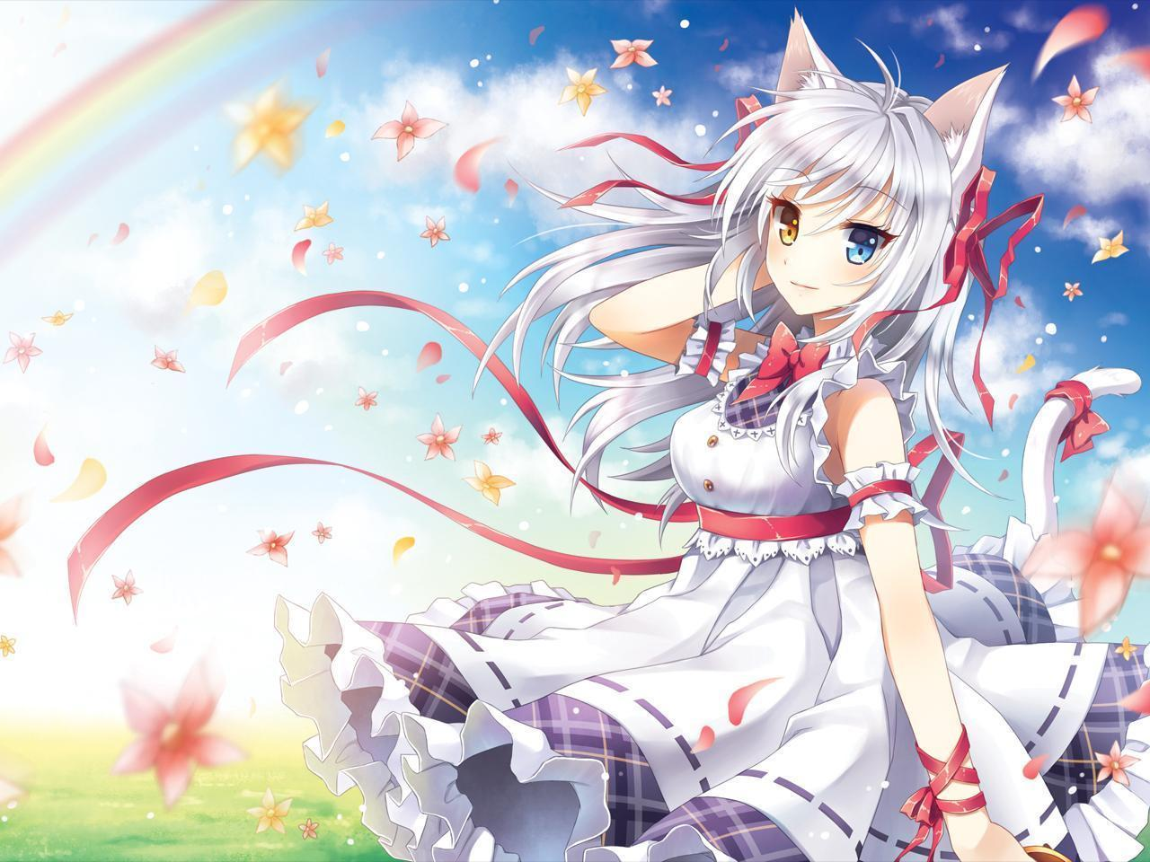 Anime Cat With Wings cat girl kawaii wallpapers - top free cat girl kawaii