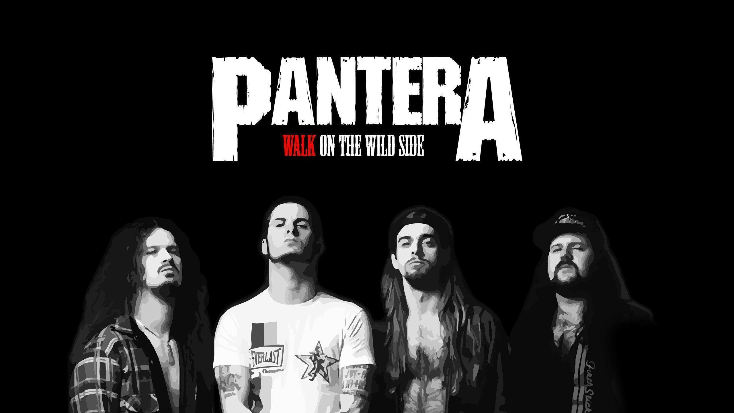 Pantera Wallpapers Top Free Pantera Backgrounds