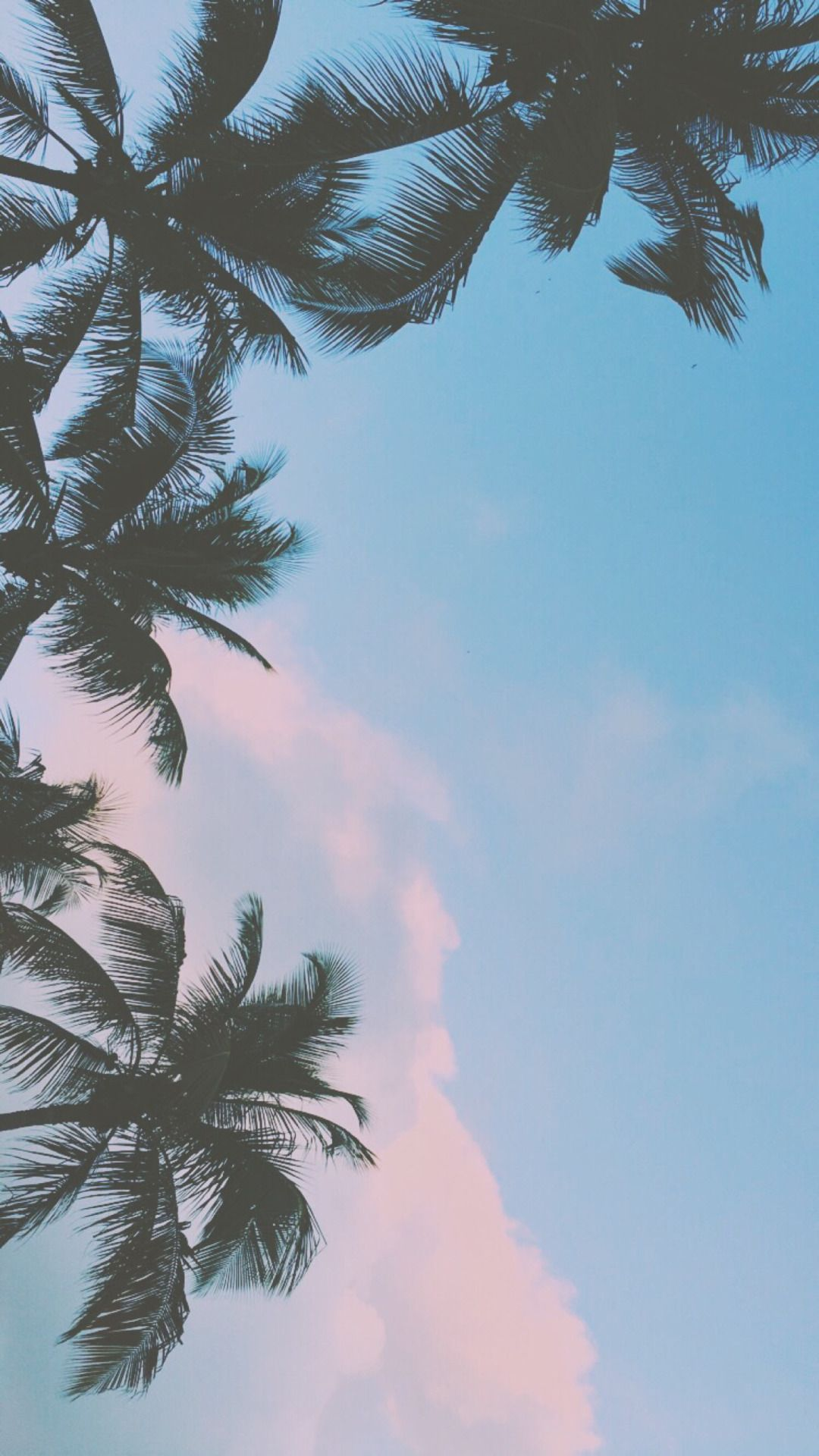 Dope Tumblr Iphone Wallpapers Top Free Dope Tumblr Iphone