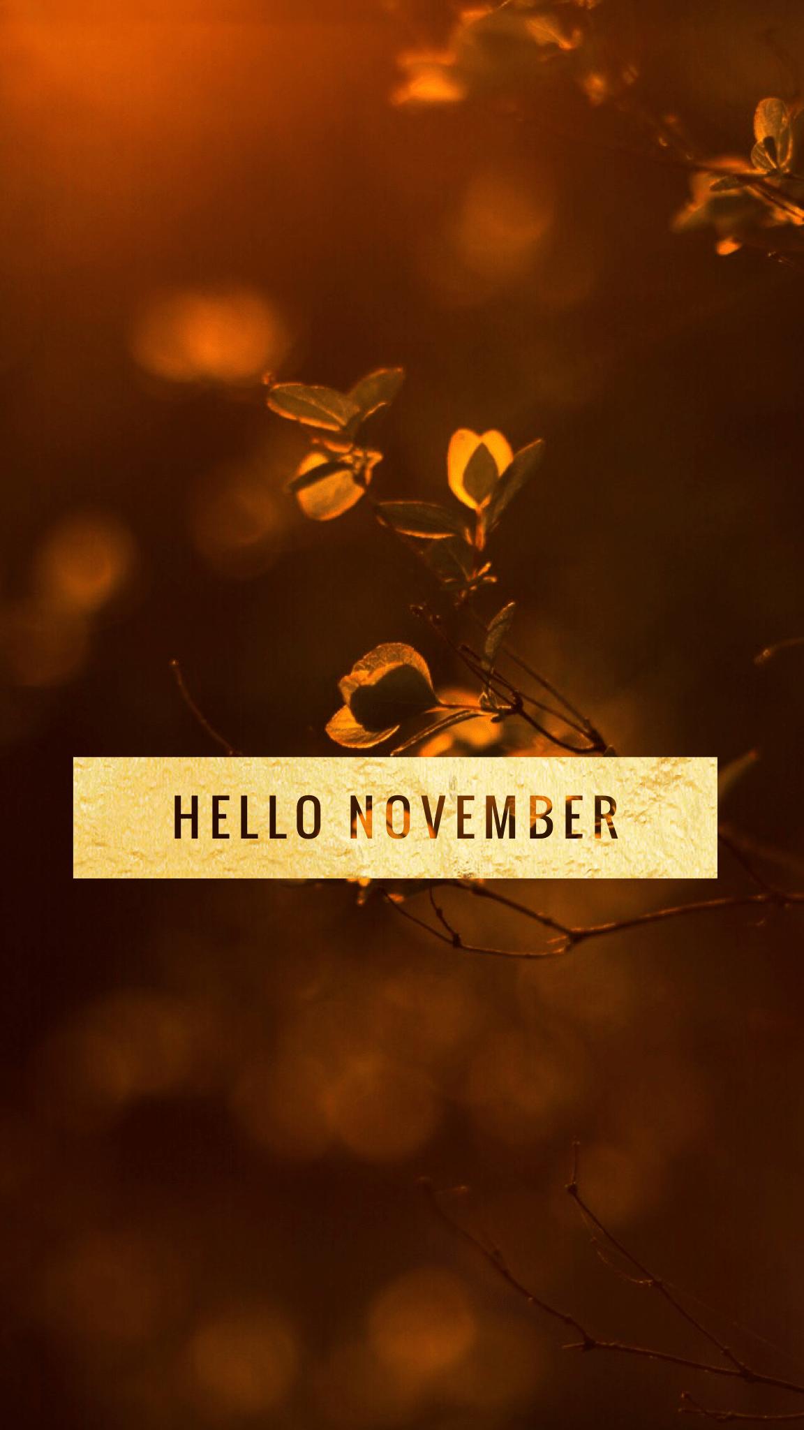Hello November Iphone Wallpapers Top Free Hello November