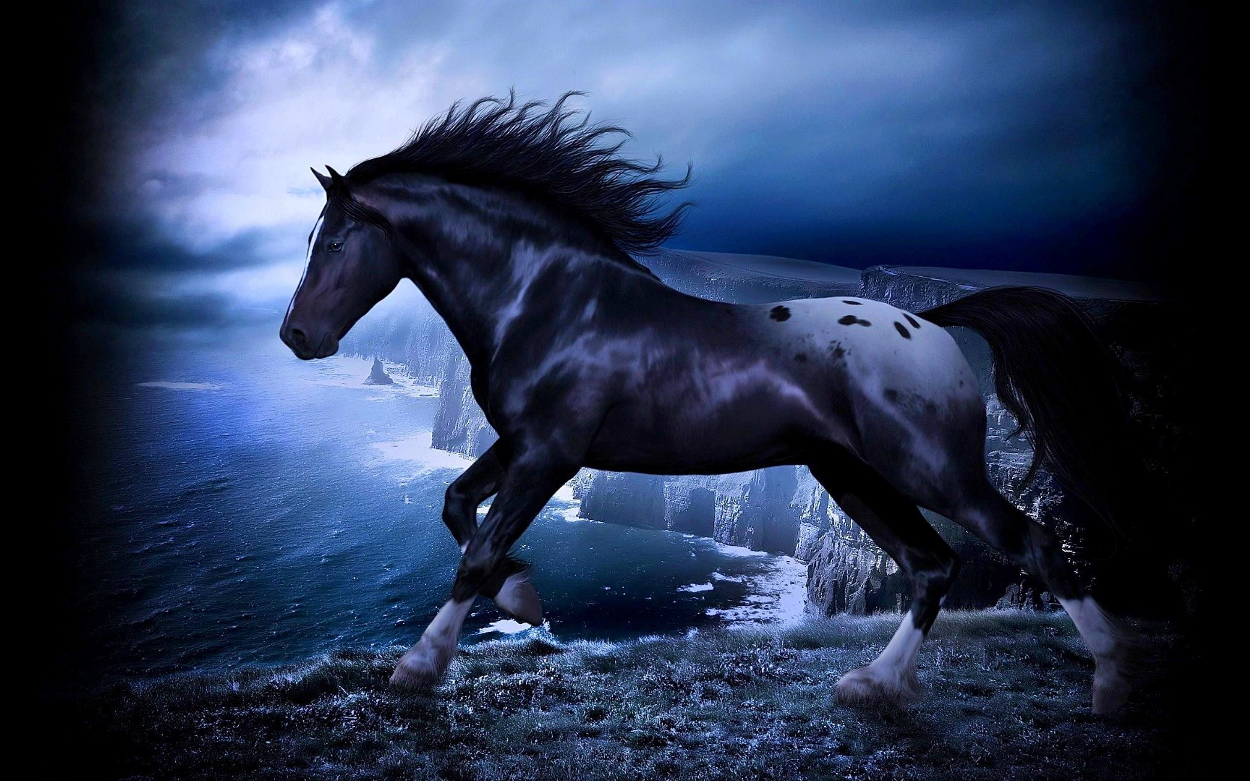 Black Horse Wallpapers Top Free Black Horse Backgrounds Wallpaperaccess