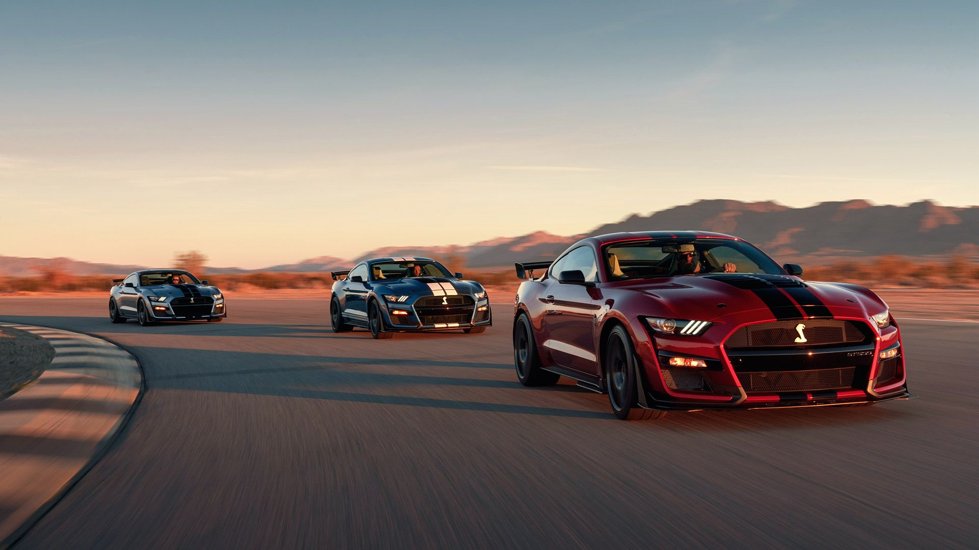 Shelby Mustang Wallpapers Top Free Shelby Mustang