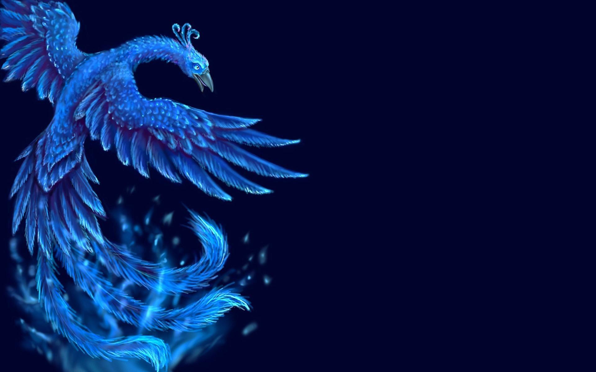 View Phoenix Bird Logo Wallpaper Pics
