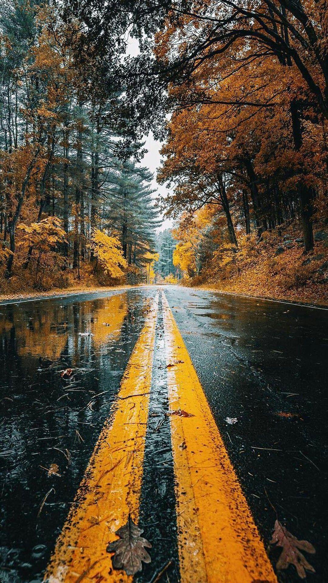 Hình nền mùa thu có mưa 1080x1920