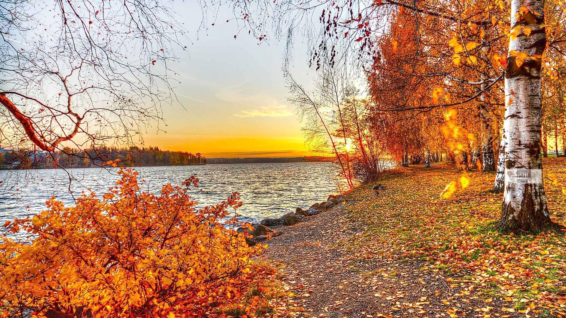 Autumn Landscape Wallpapers Top Free Autumn Landscape
