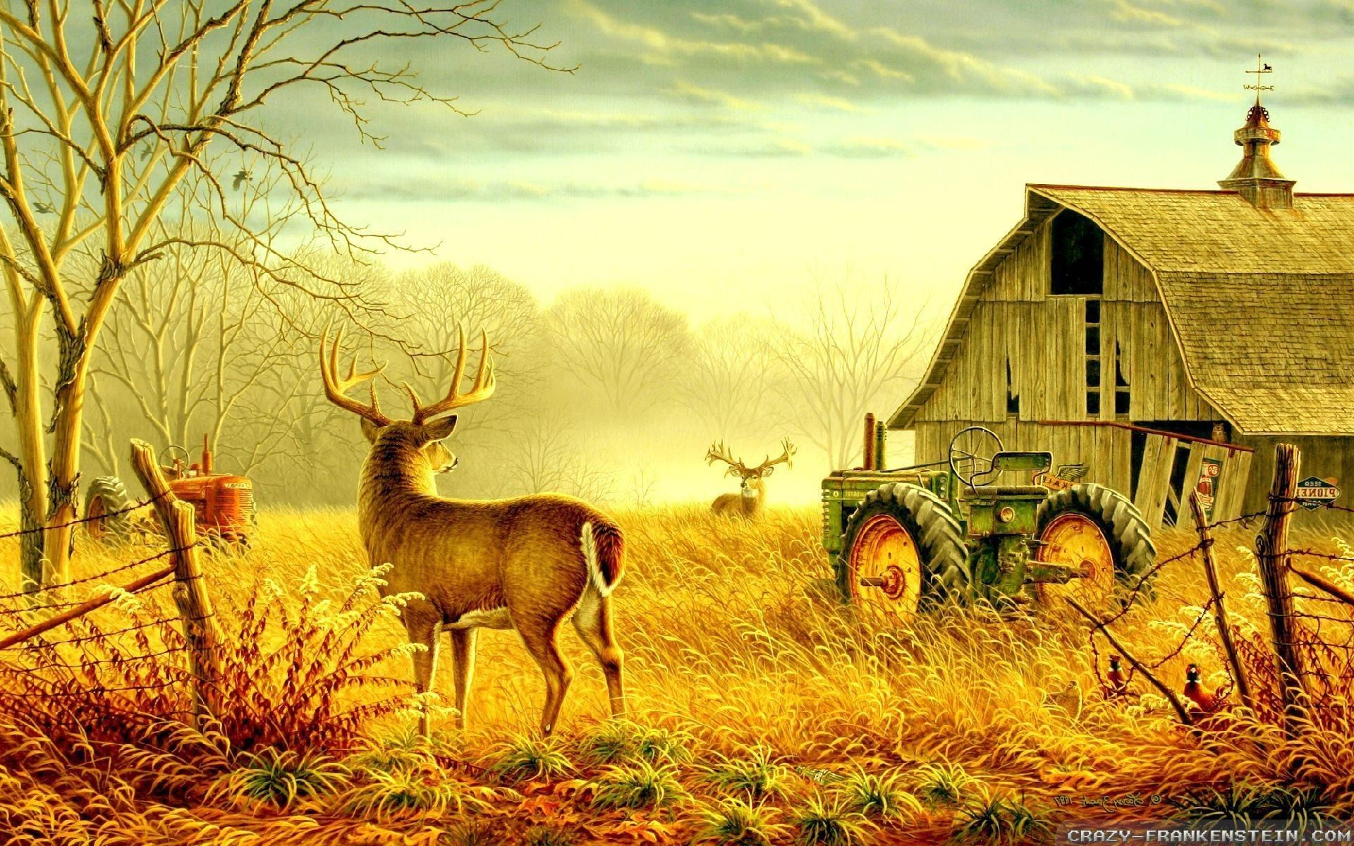 Country Scenes Wallpapers Top Free Country Scenes Backgrounds Wallpaperaccess