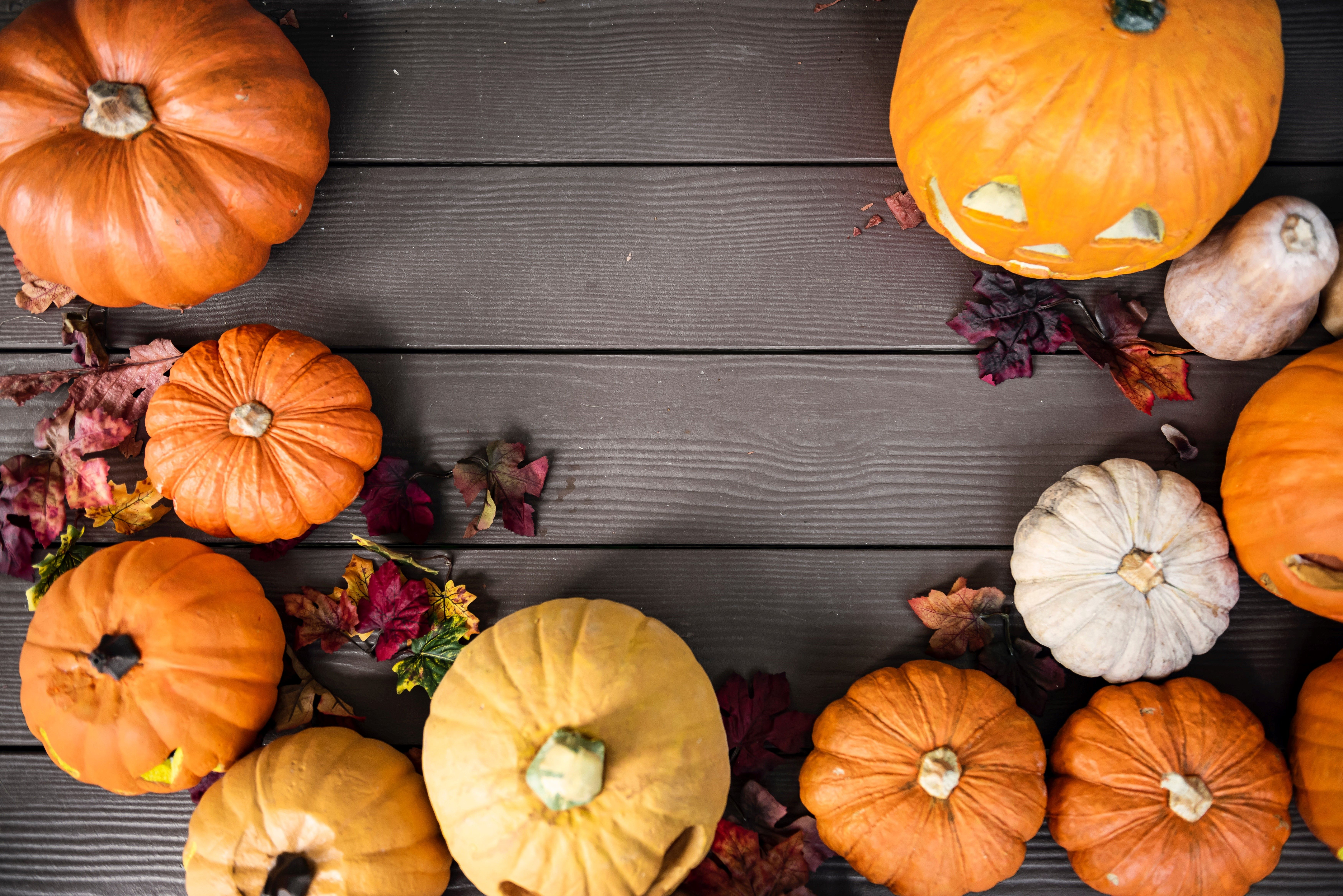 Pumpkins And Fall Nature Wallpapers Top Free Pumpkins And Fall Nature Backgrounds Wallpaperaccess