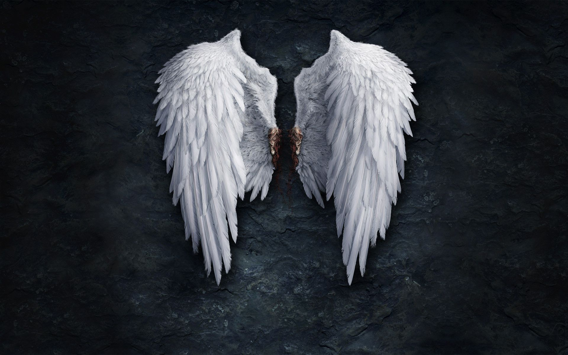Angel Wings Wallpapers Top Free Angel Wings Backgrounds