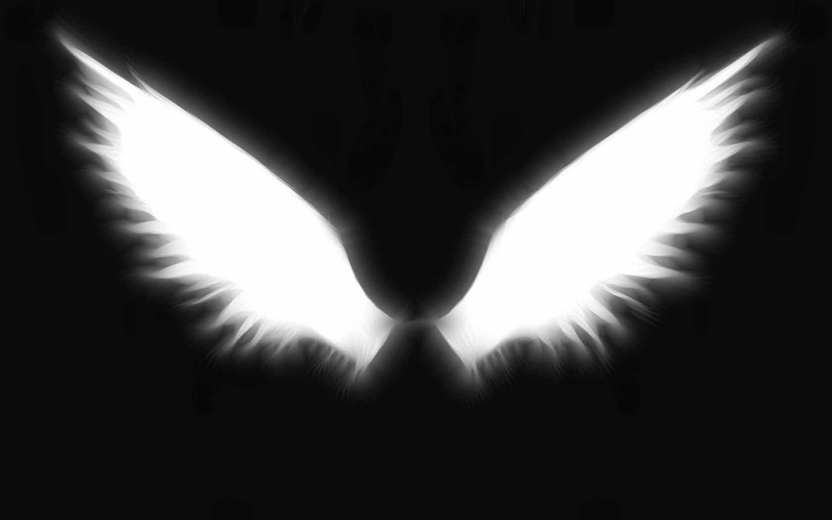 Angel Wings Wallpapers - Top Free Angel