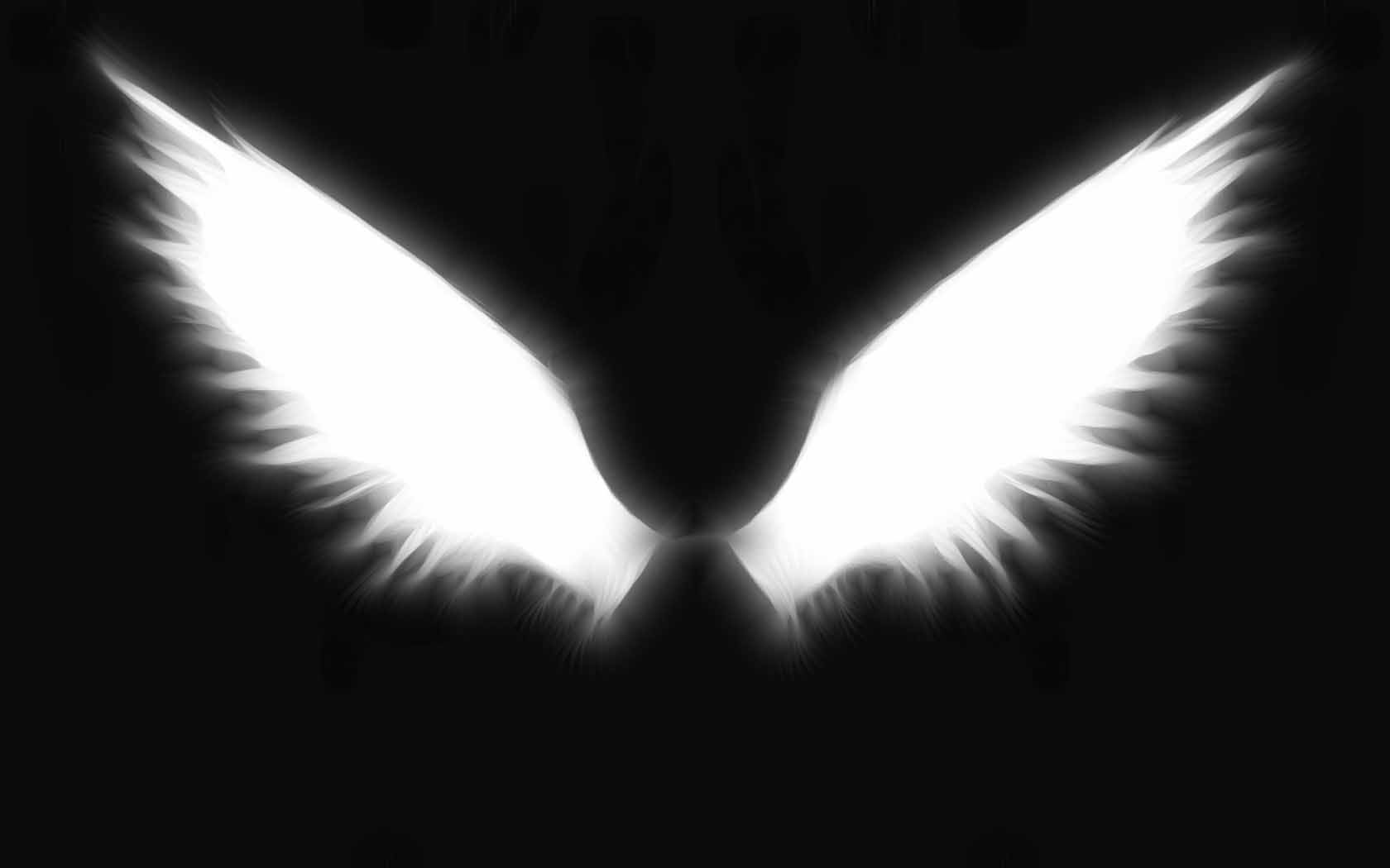 Angel Wings Wallpapers Top Free Angel Wings Backgrounds