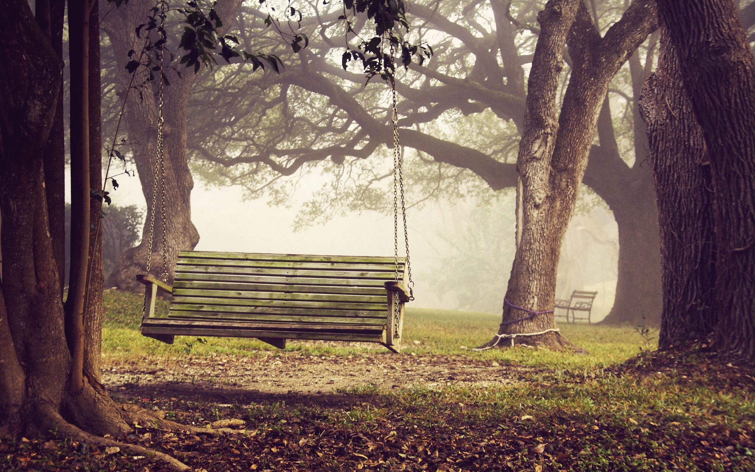 Bench Wallpapers Top Free Bench Backgrounds Wallpaperaccess