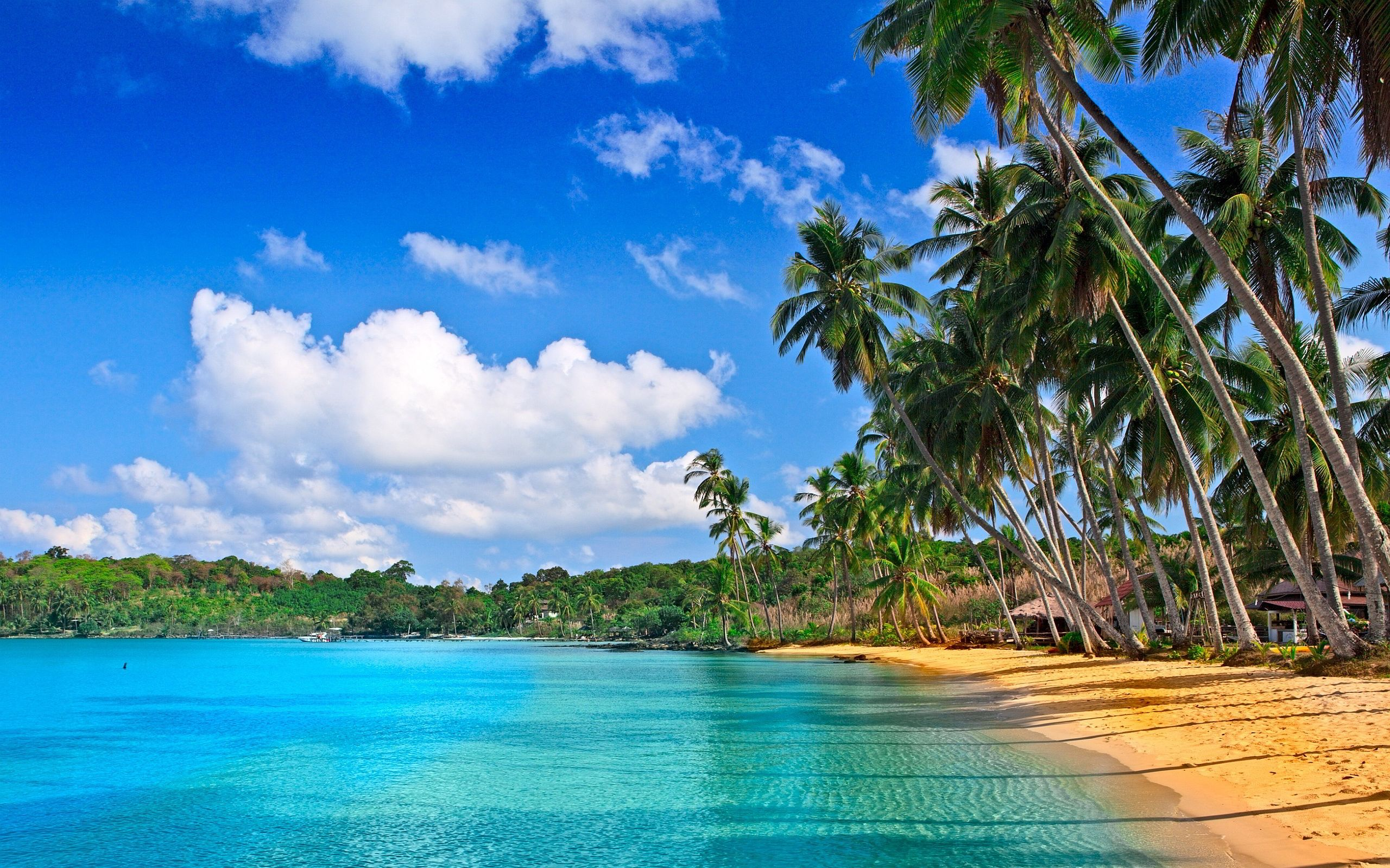 Tropical Beach Landscape Wallpapers Top Free Tropical