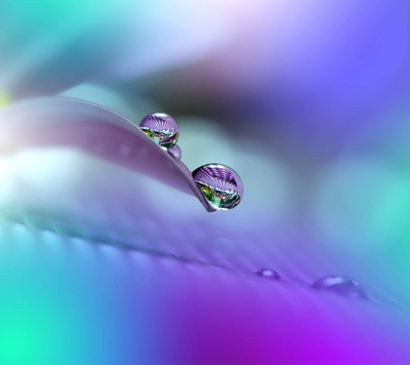 colorful raindrop wallpapers top free