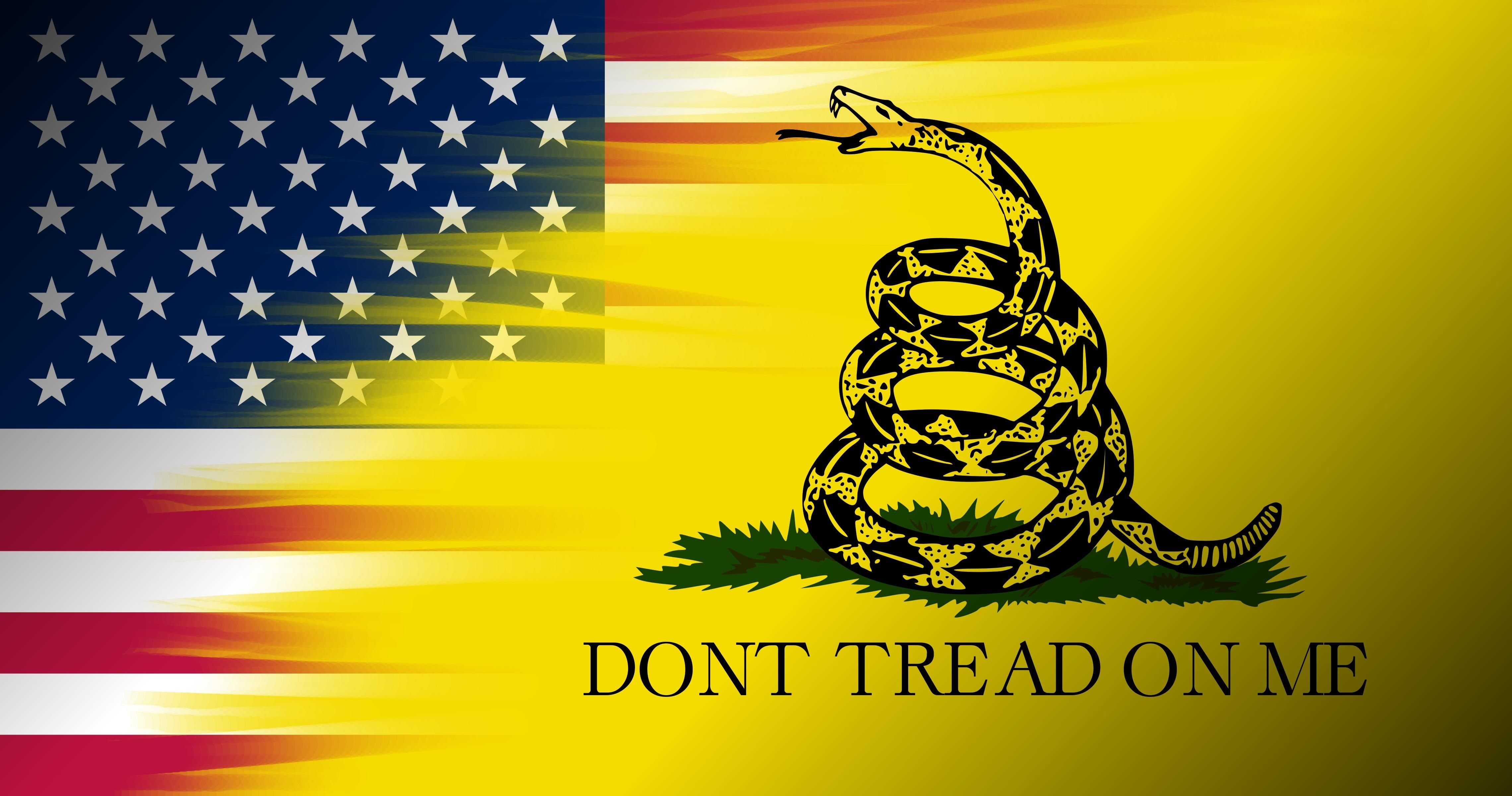 Don T Tread On Me Flag Wallpapers Top Free Don T Tread On Me