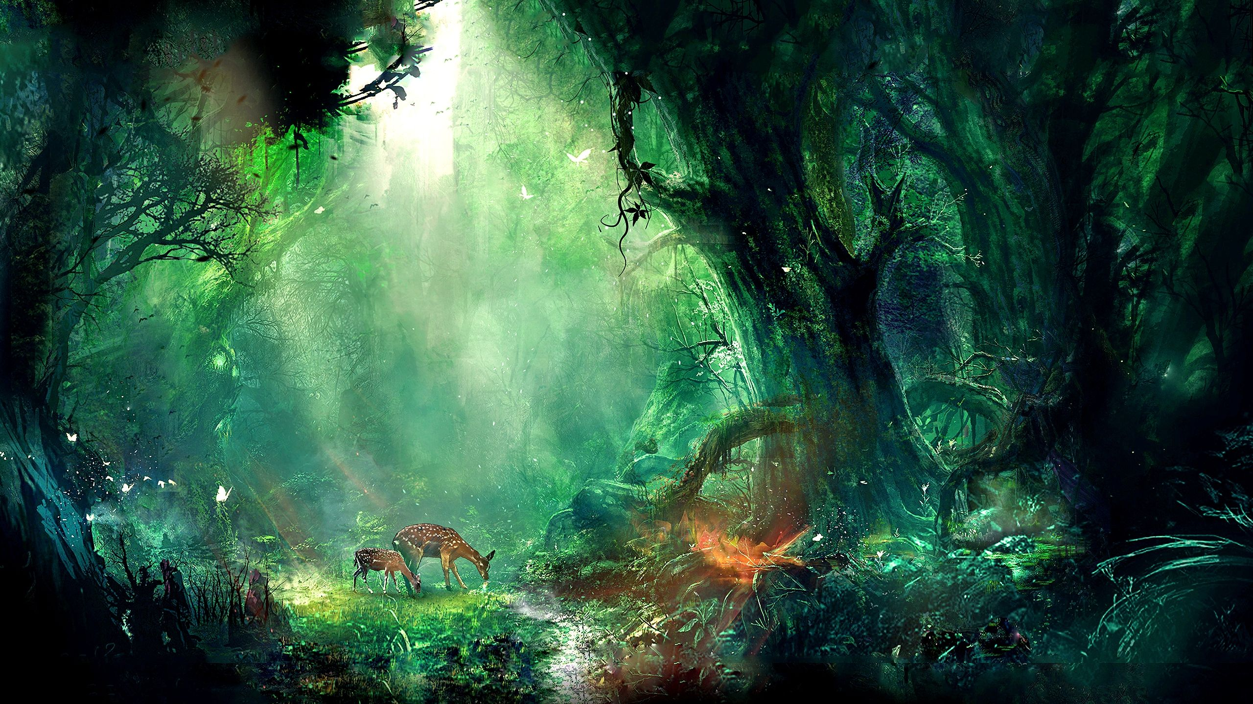 Magic Nature Wallpapers Top Free Magic Nature Backgrounds Wallpaperaccess