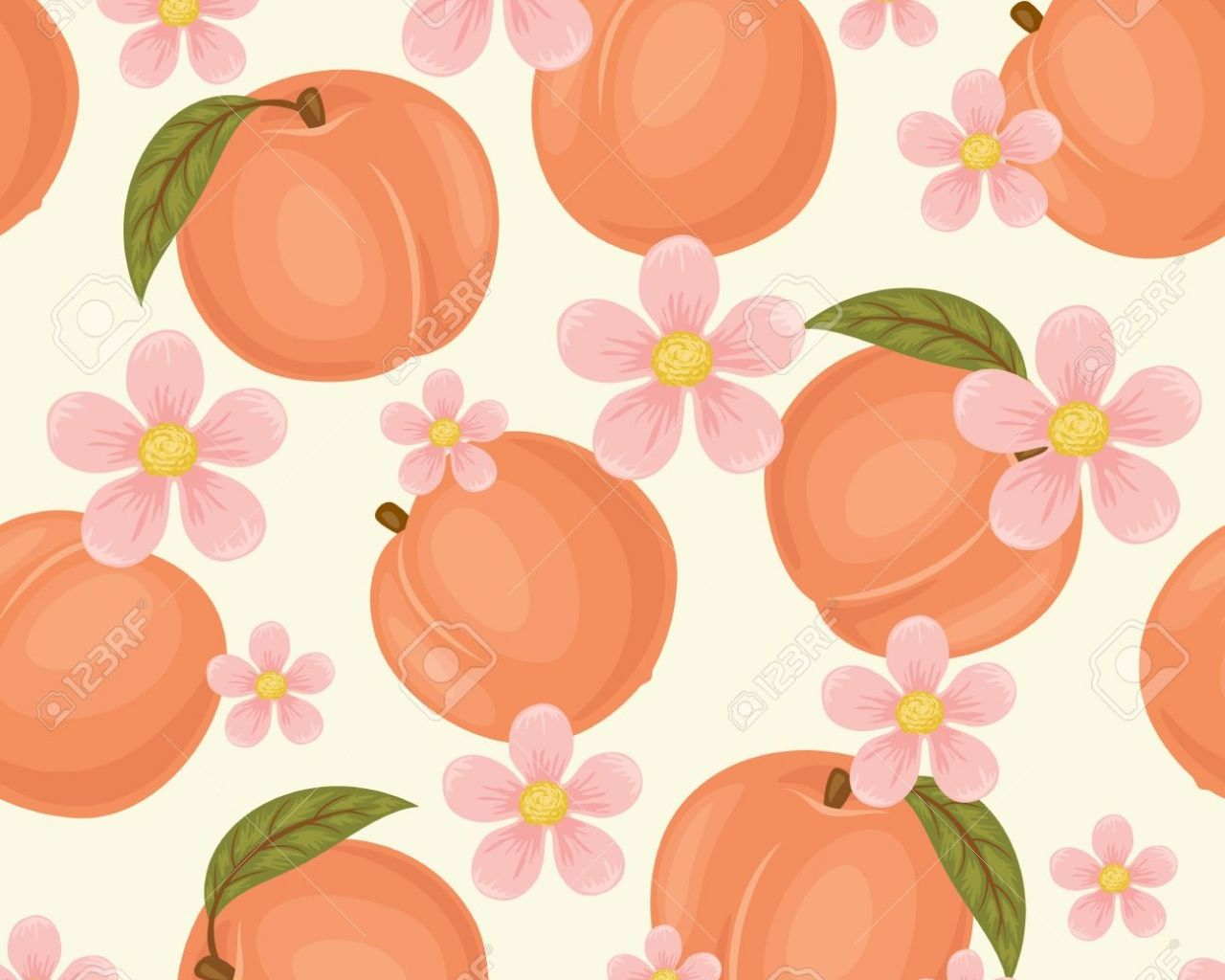 peach wallpapers top free peach backgrounds wallpaperaccess peach wallpapers top free peach