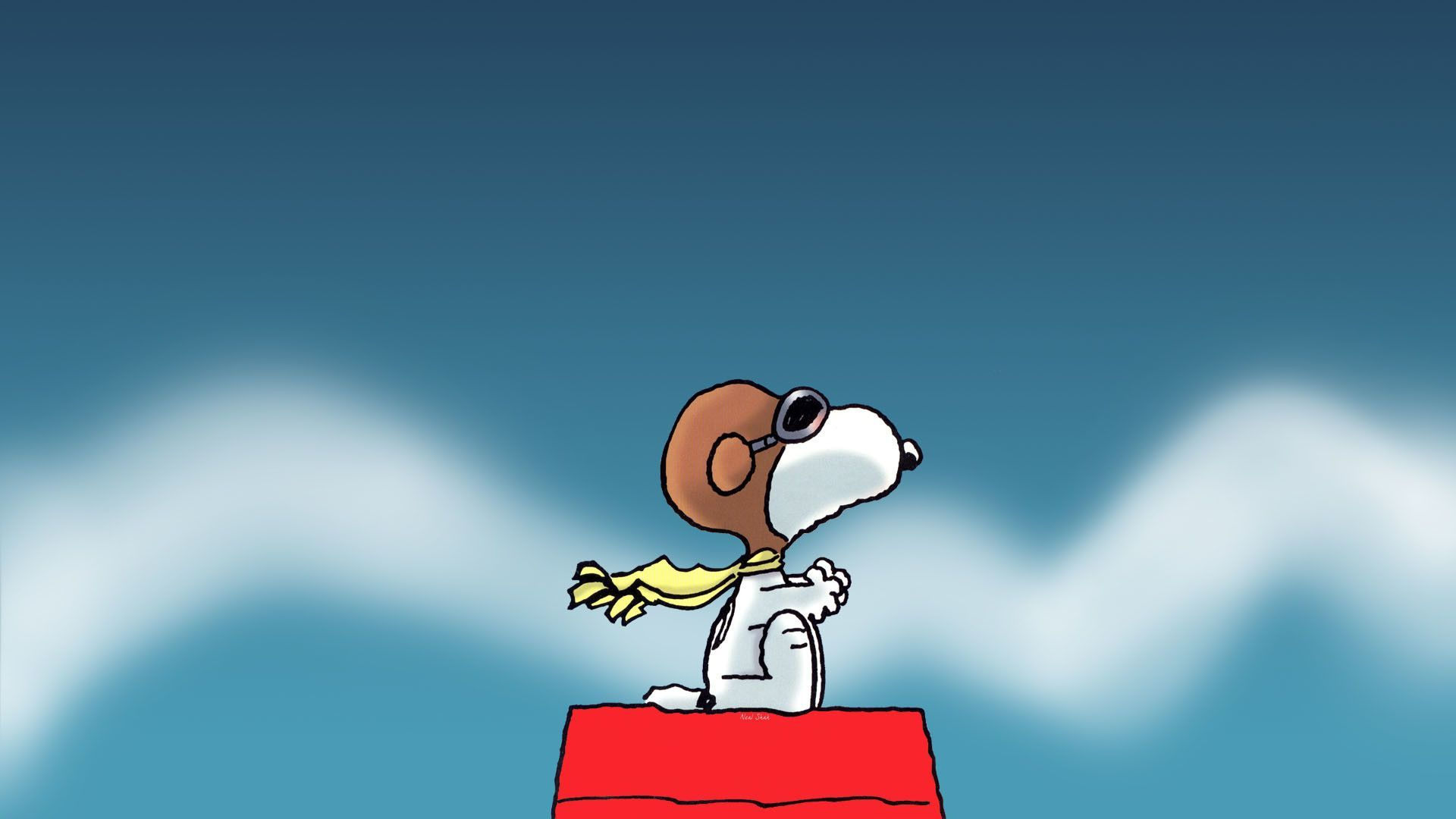 Snoopy Wallpapers Top Free Snoopy Backgrounds Wallpaperaccess