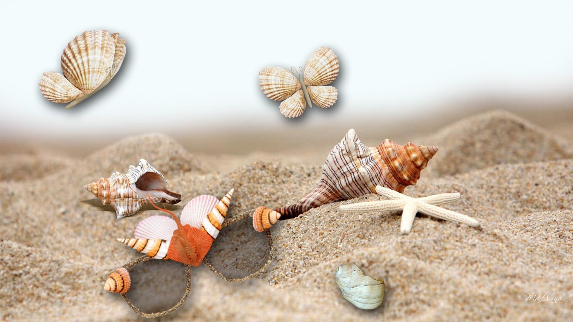 личная картинки с песком и ракушками восхищаются, считают непревзойденными