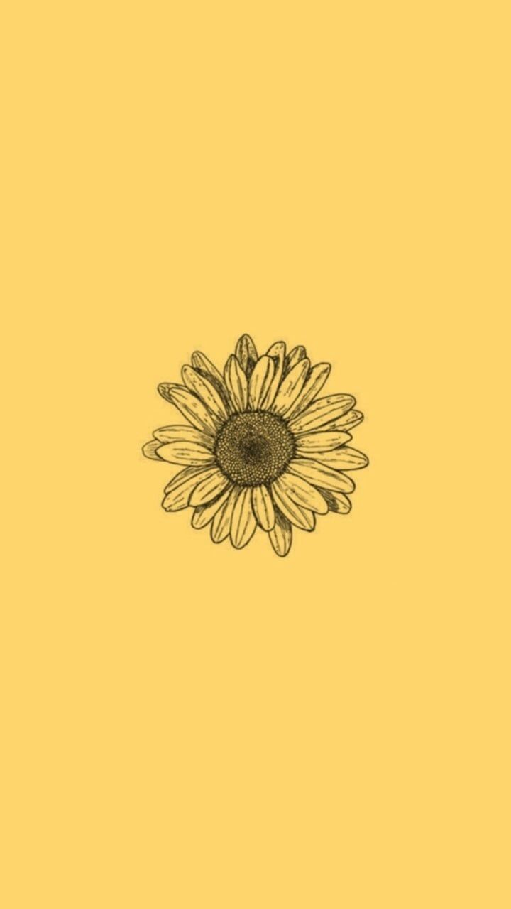 Sunflower Yellow Tumblr Aesthetic Wallpapers , Top Free
