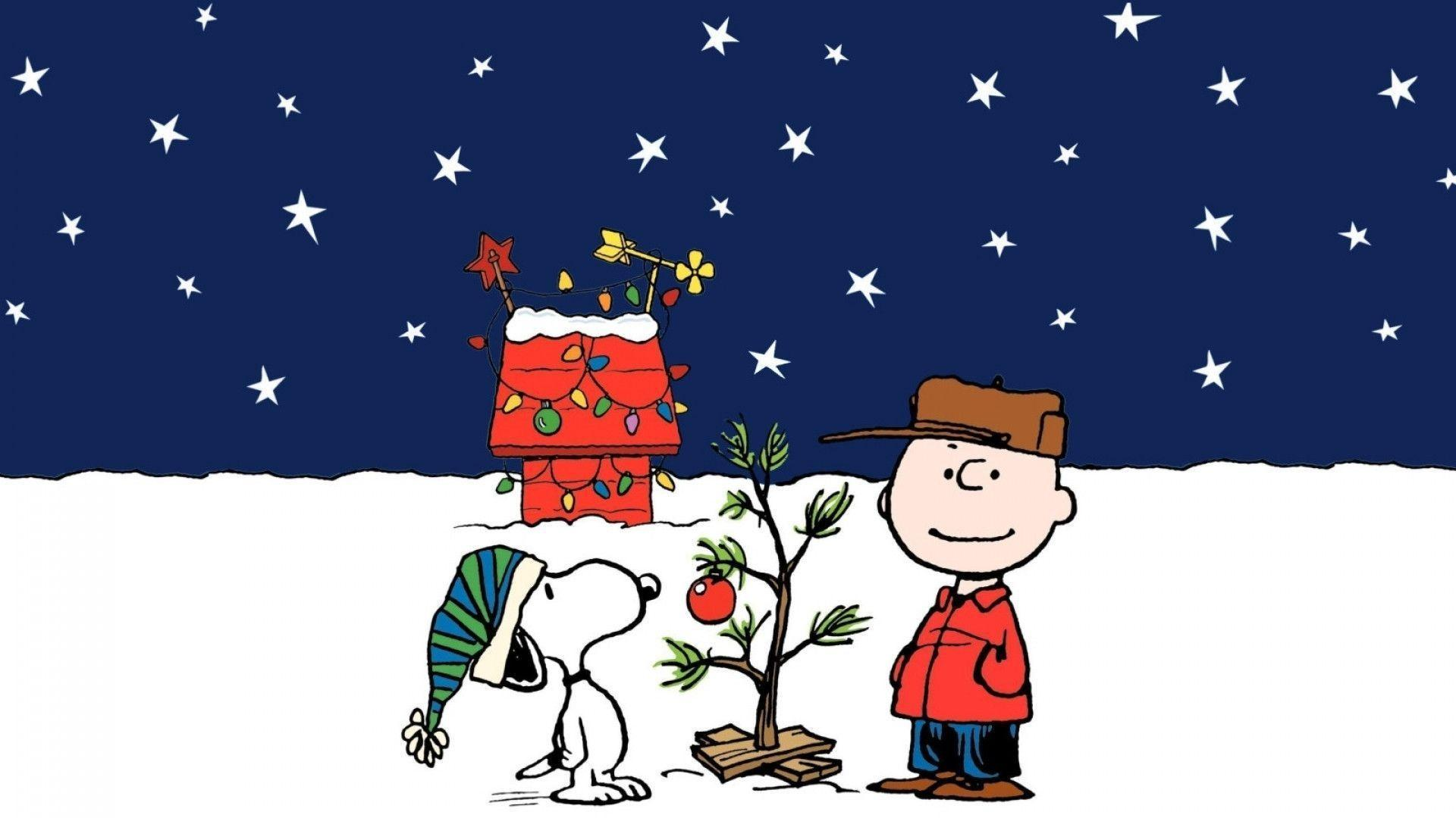Snoopy Winter Wallpapers Top Free Snoopy Winter Backgrounds Wallpaperaccess