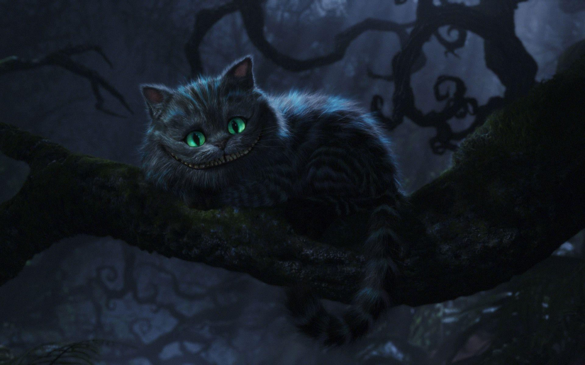 Cheshire Cat Wallpapers Top Free Cheshire Cat Backgrounds Wallpaperaccess