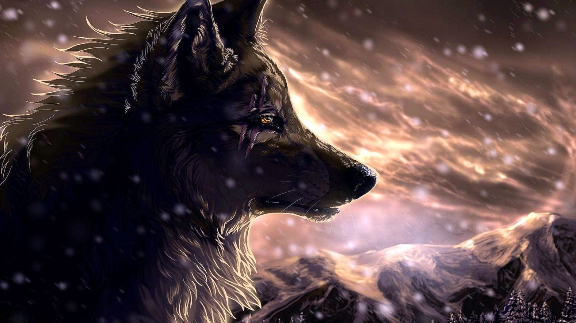 Awesome Wolf Wallpapers Top Free Awesome Wolf Backgrounds Wallpaperaccess