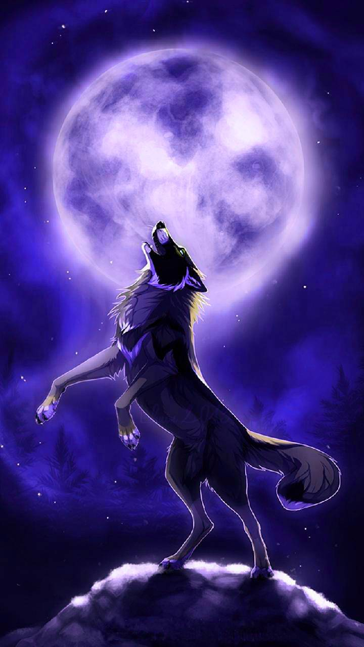 Mythical Wolf Wallpapers Top Free Mythical Wolf Backgrounds