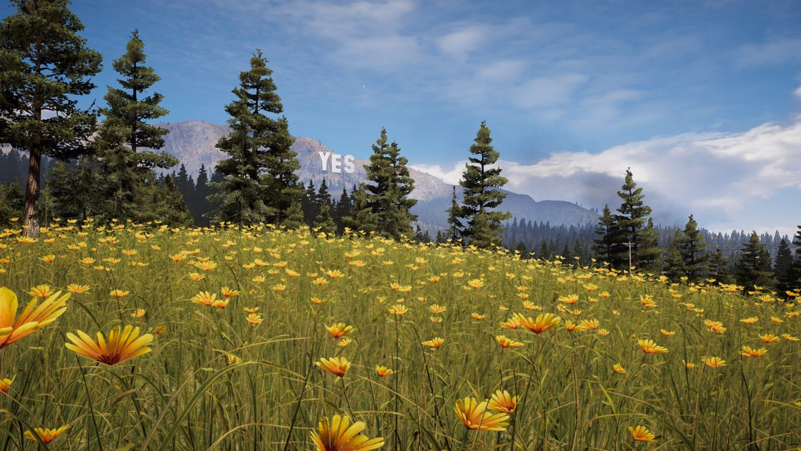 Far Cry 5 Wallpapers Top Free Far Cry 5 Backgrounds