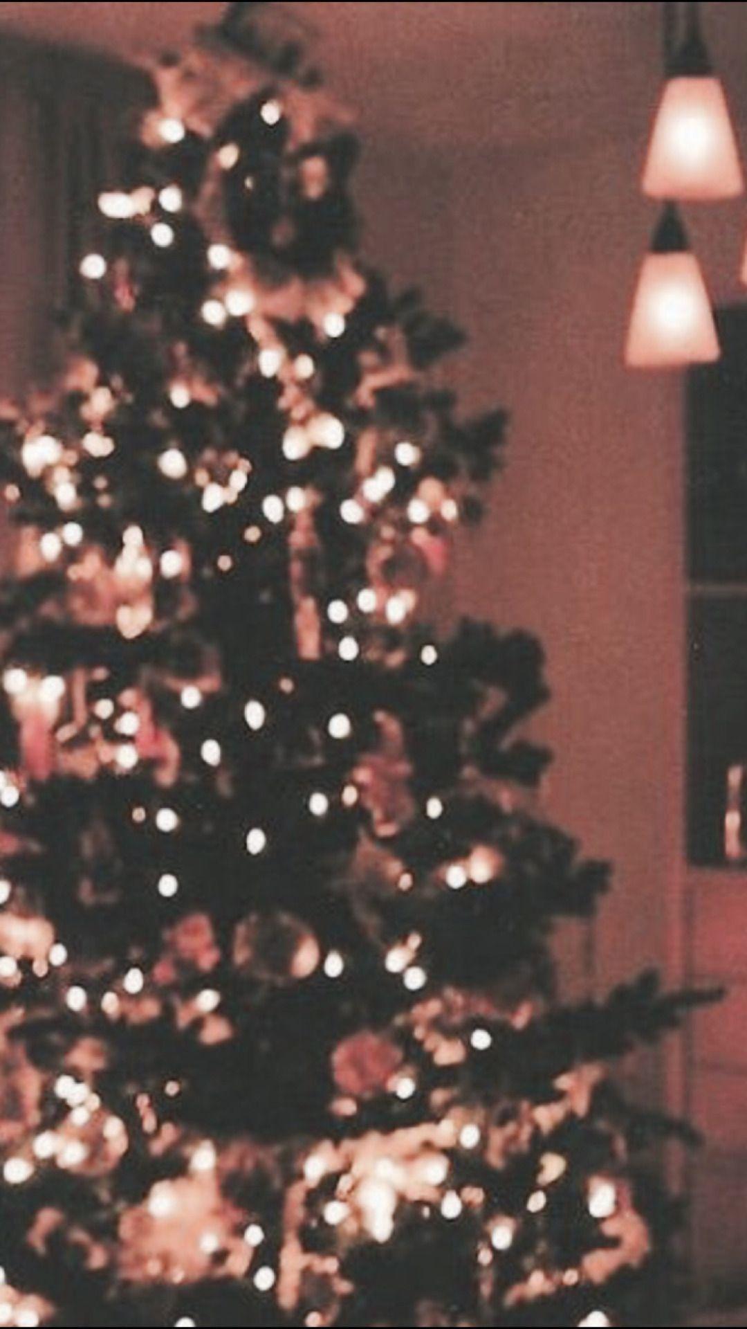Christmas Tree Aesthetic Wallpapers Top Free Christmas