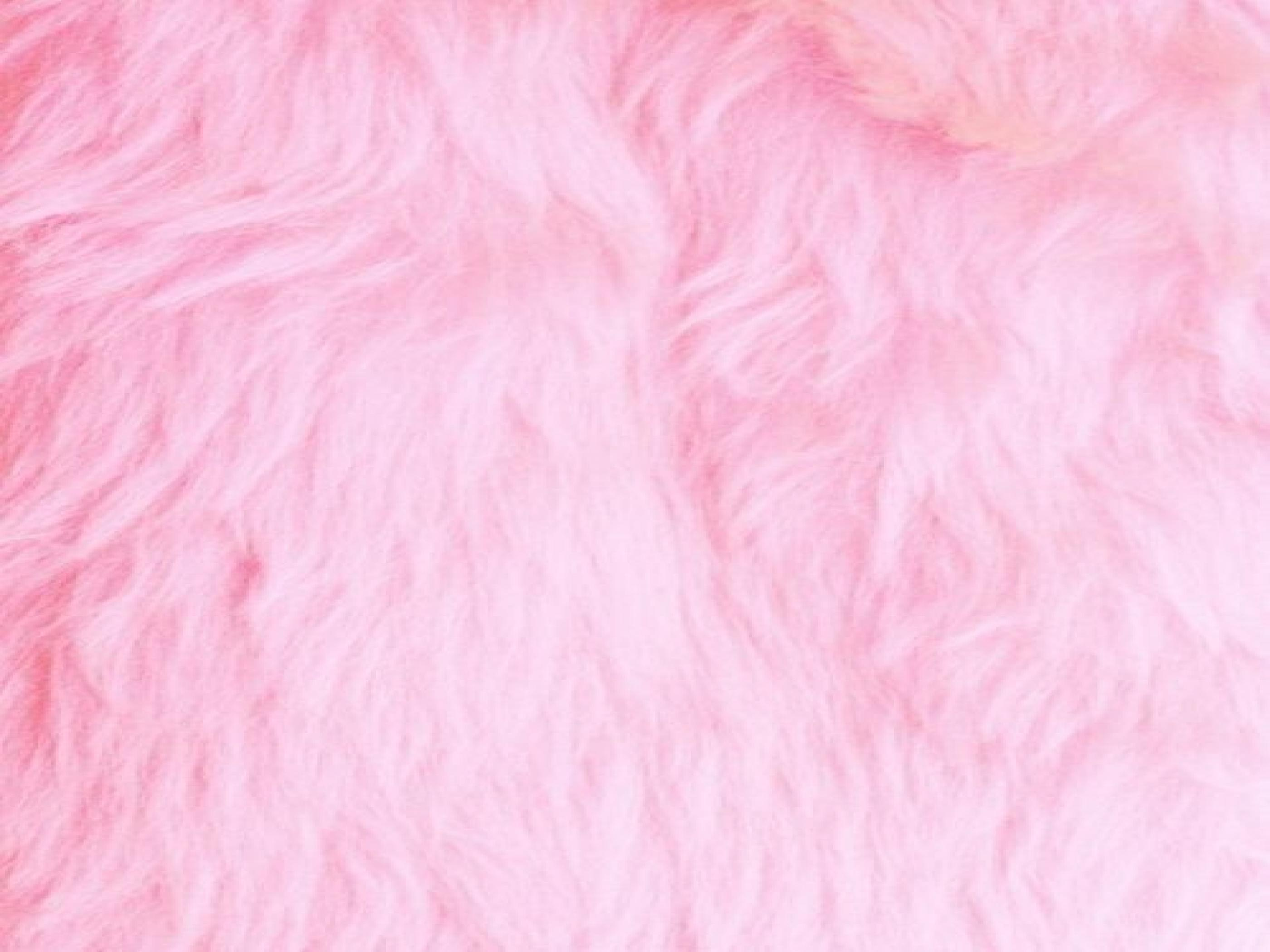 Fluffy Wallpapers Top Free Fluffy Backgrounds Wallpaperaccess