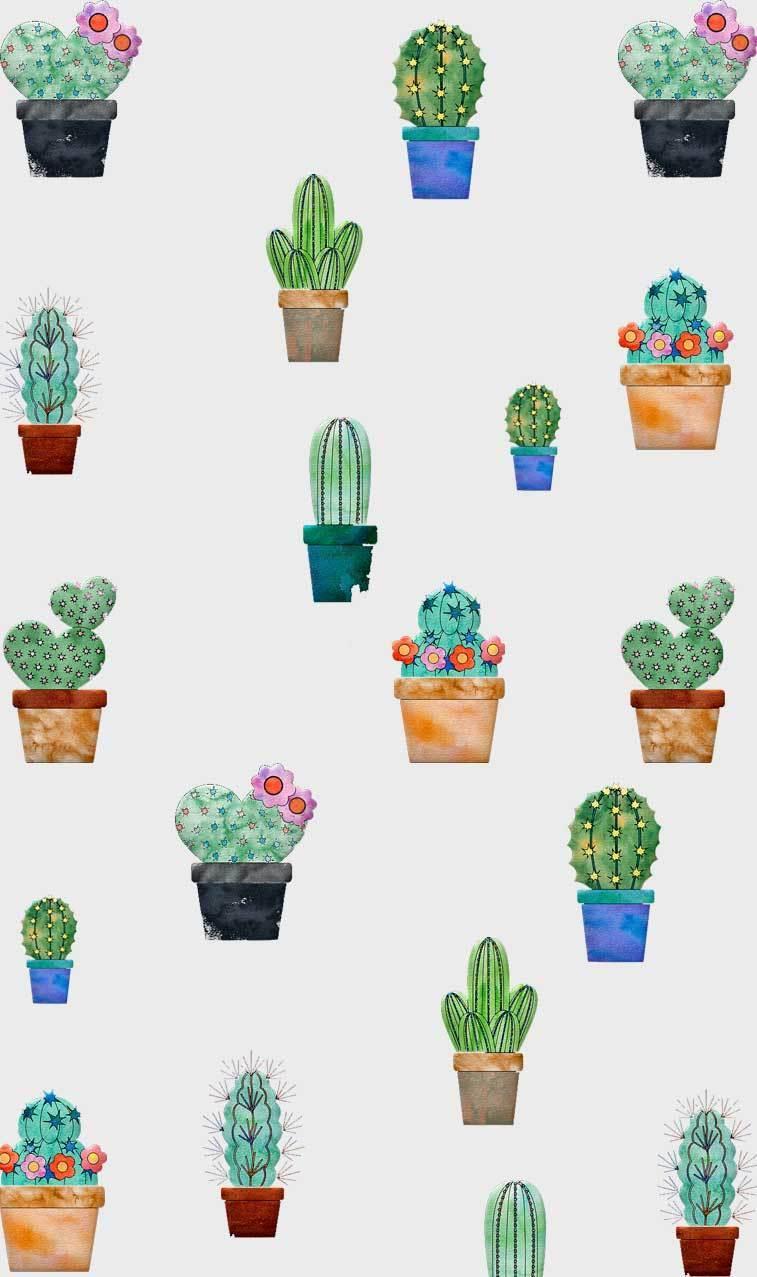 Cactus Iphone Wallpapers Top Free Cactus Iphone Backgrounds Wallpaperaccess