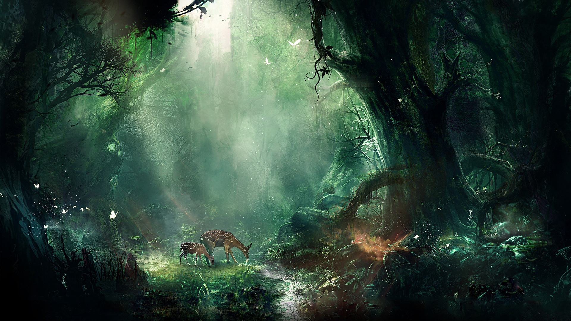 Fantasy Forest Wallpapers Top Free Fantasy Forest
