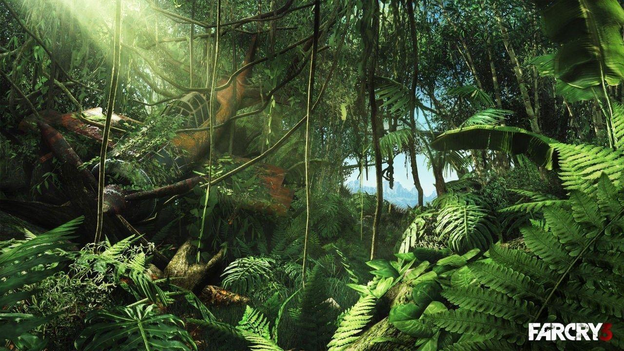 Jungle Computer Wallpapers Top Free Jungle Computer Backgrounds Wallpaperaccess