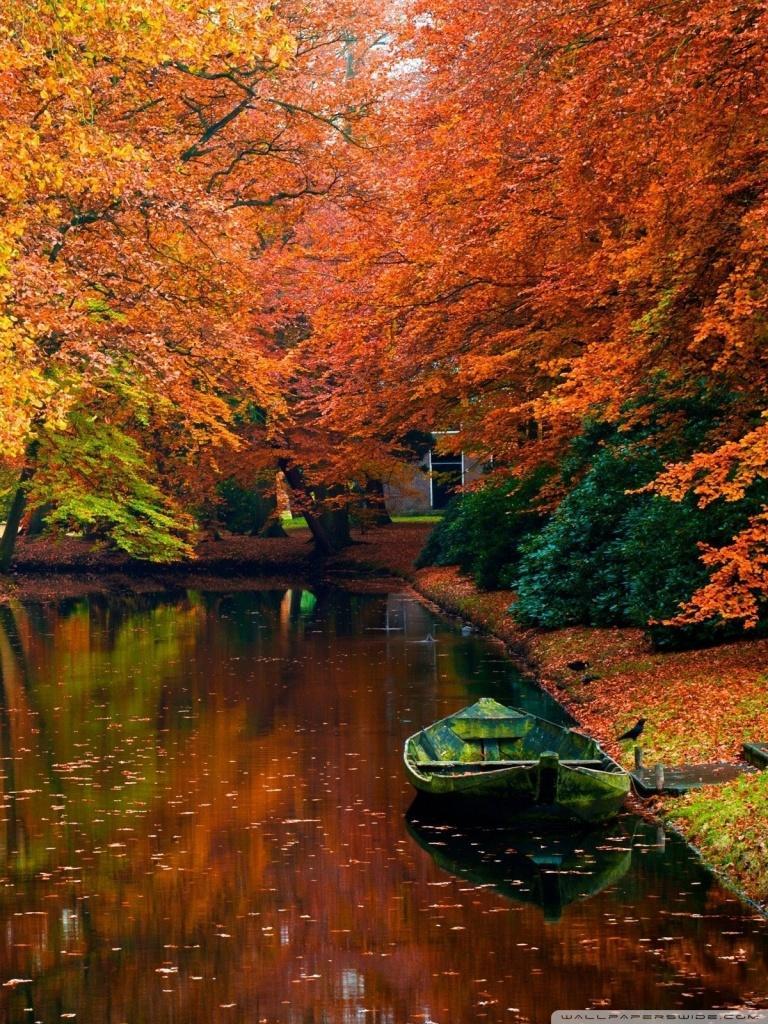 768x1024 Autumn - Autumn Phone Wallpaper HD, HD Wallpaper
