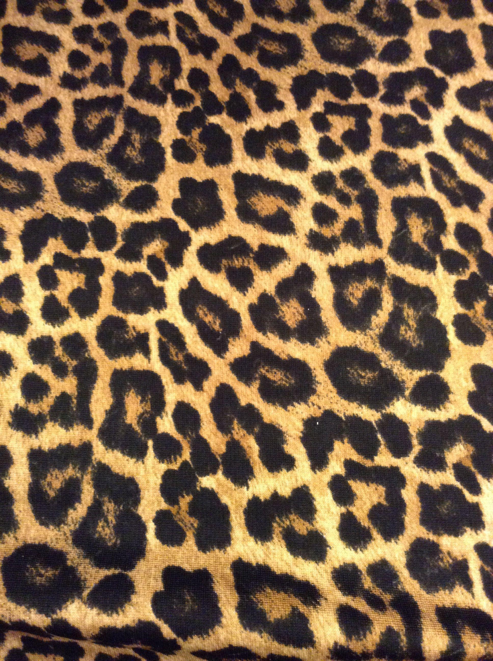 Leopard Pattern Wallpapers Top Free Leopard Pattern Backgrounds Wallpaperaccess