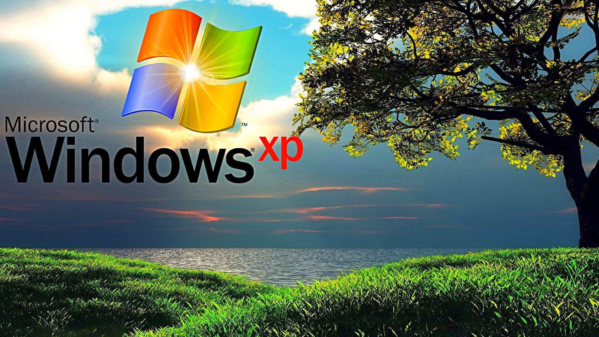 47 Best Free Windows Xp Desktop Wallpapers Wallpaperaccess