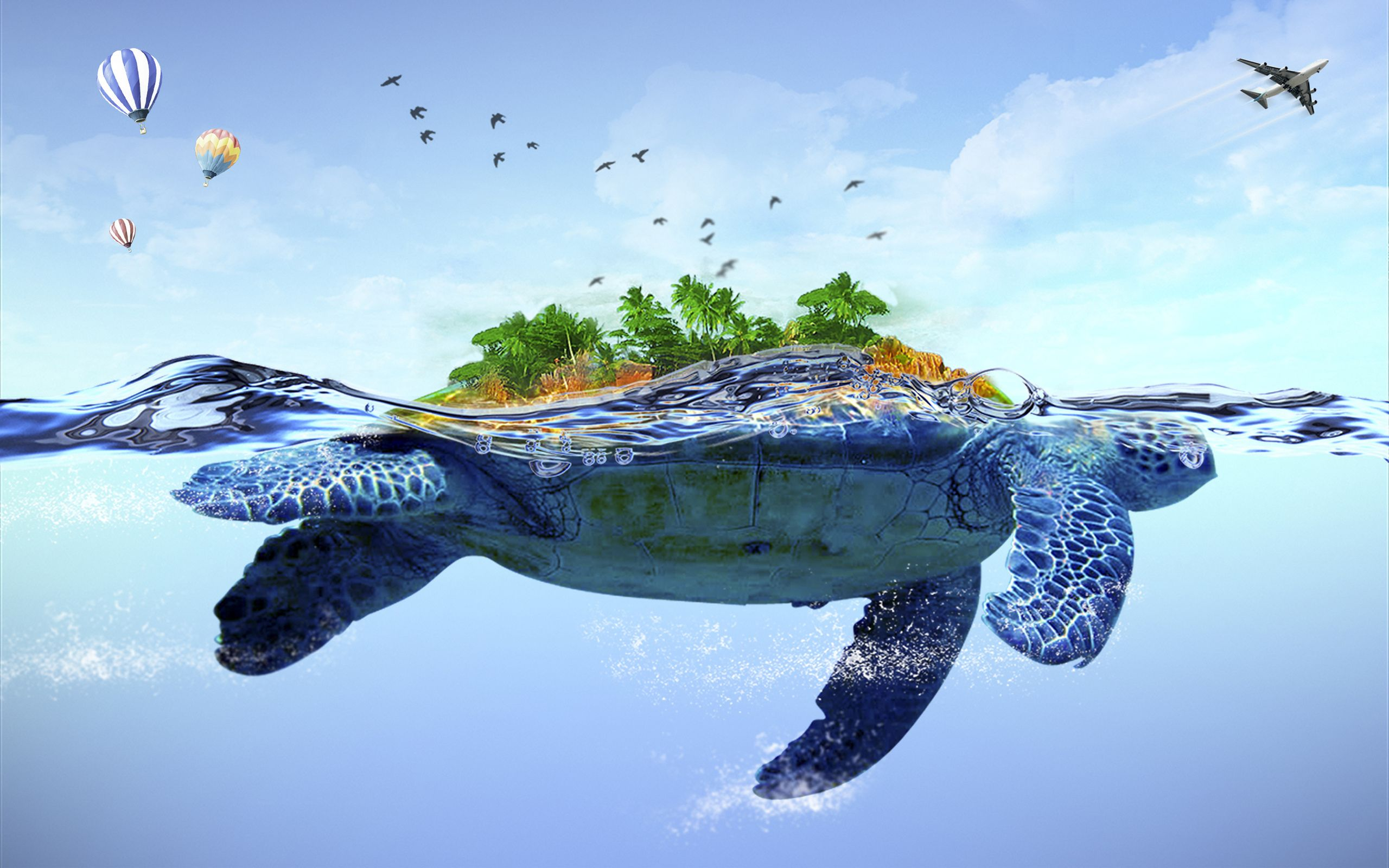 Turtle Wallpapers Top Free Turtle Backgrounds Wallpaperaccess