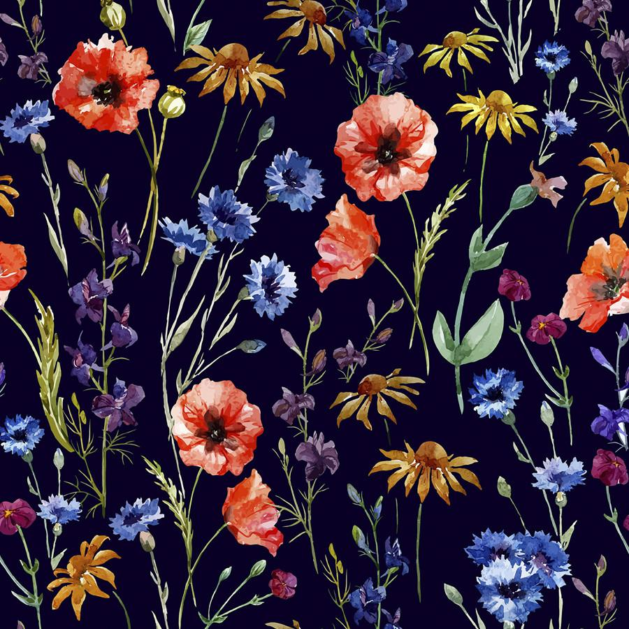 Wild Flowers Wallpapers Top Free Wild Flowers Backgrounds