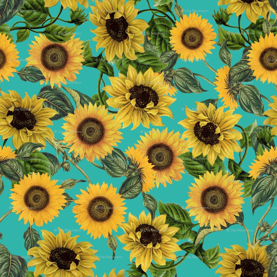 Hipster Sunflower Wallpapers - Top Free Hipster Sunflower ...