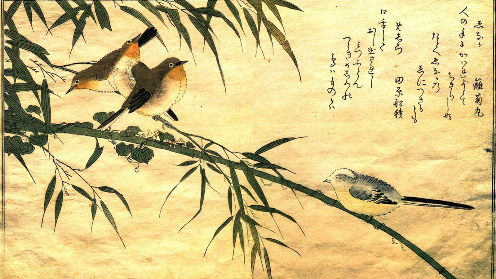 Traditional Japanese Art Wallpapers Top Free Traditional