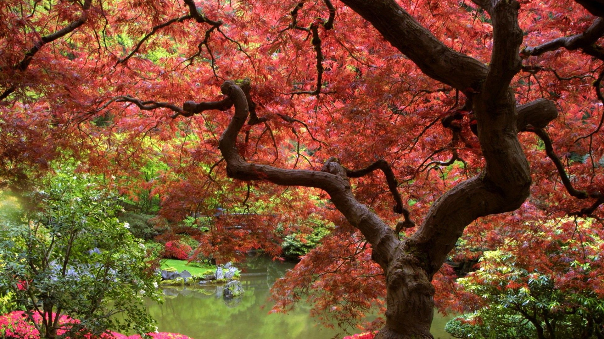 Japanese Garden Wallpapers: Japanese Desktop Wallpapers