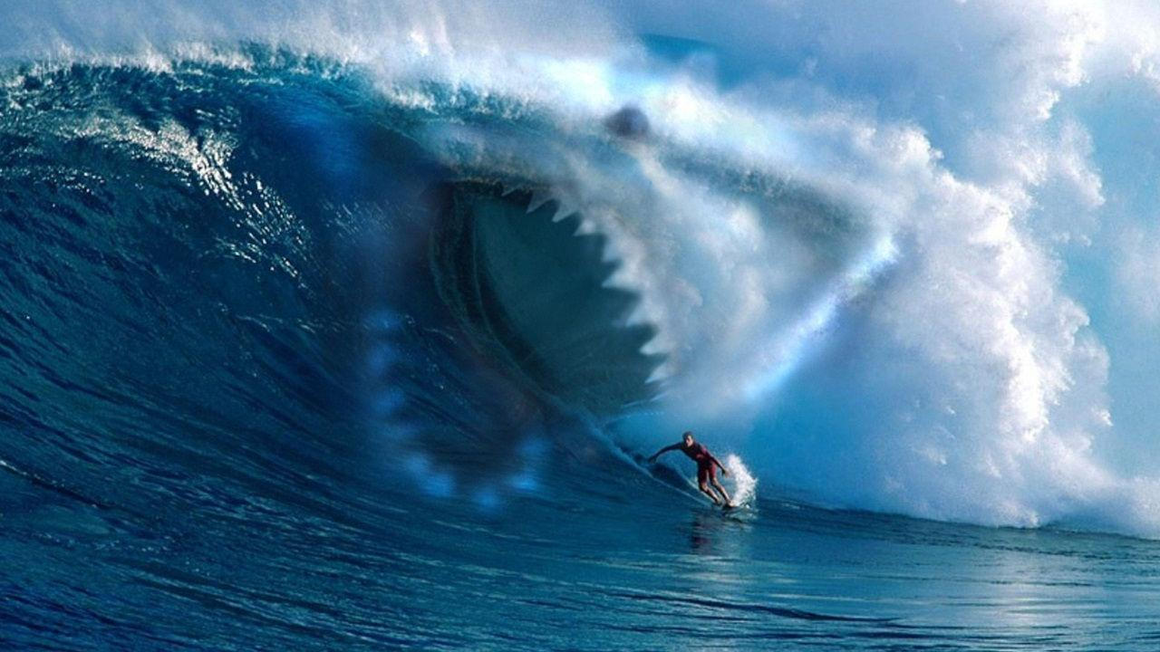 Surf Aesthetic Wallpapers Top Free Surf Aesthetic Backgrounds Wallpaperaccess