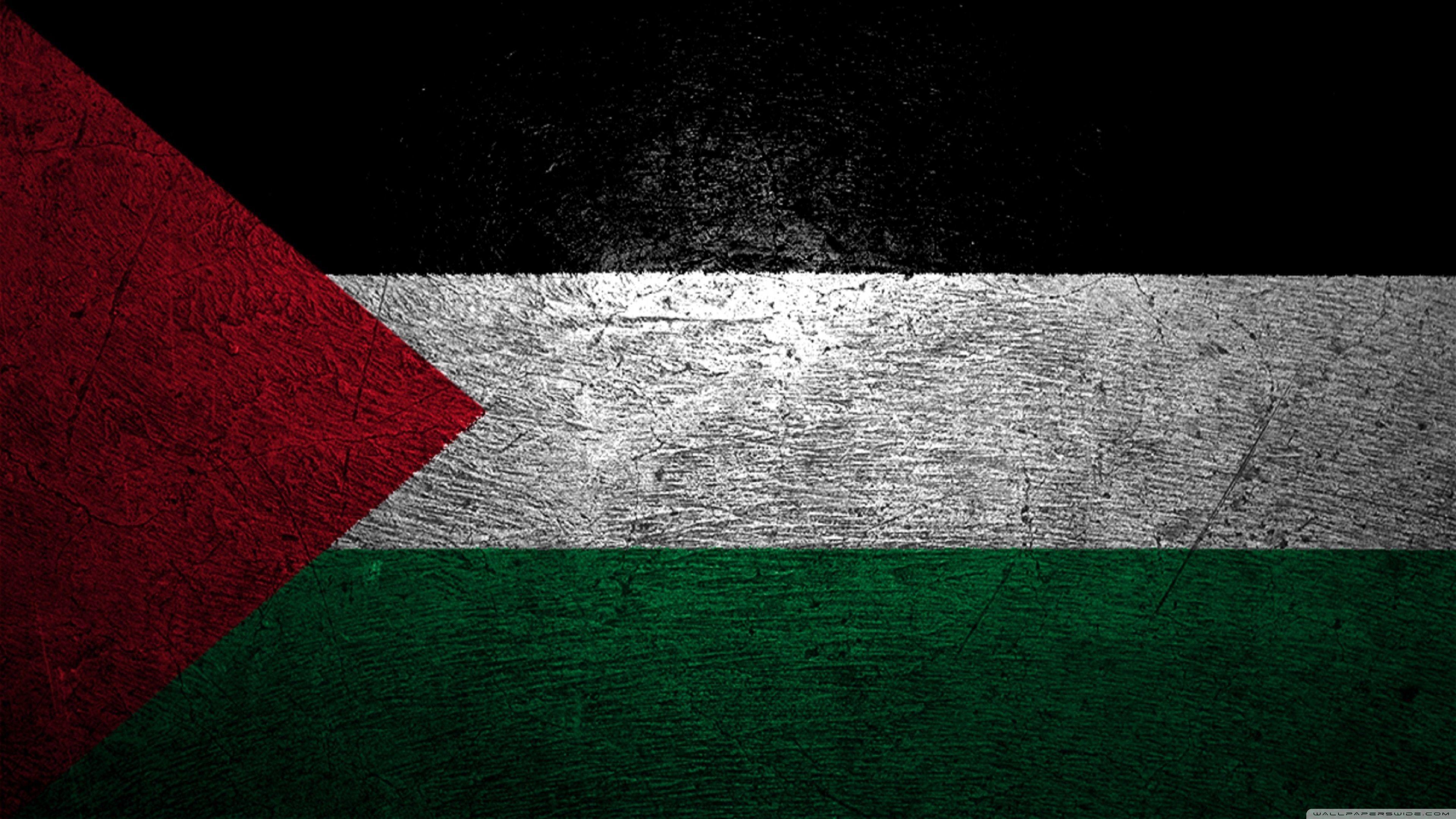 Palestine Flag Wallpapers Top Free Palestine Flag