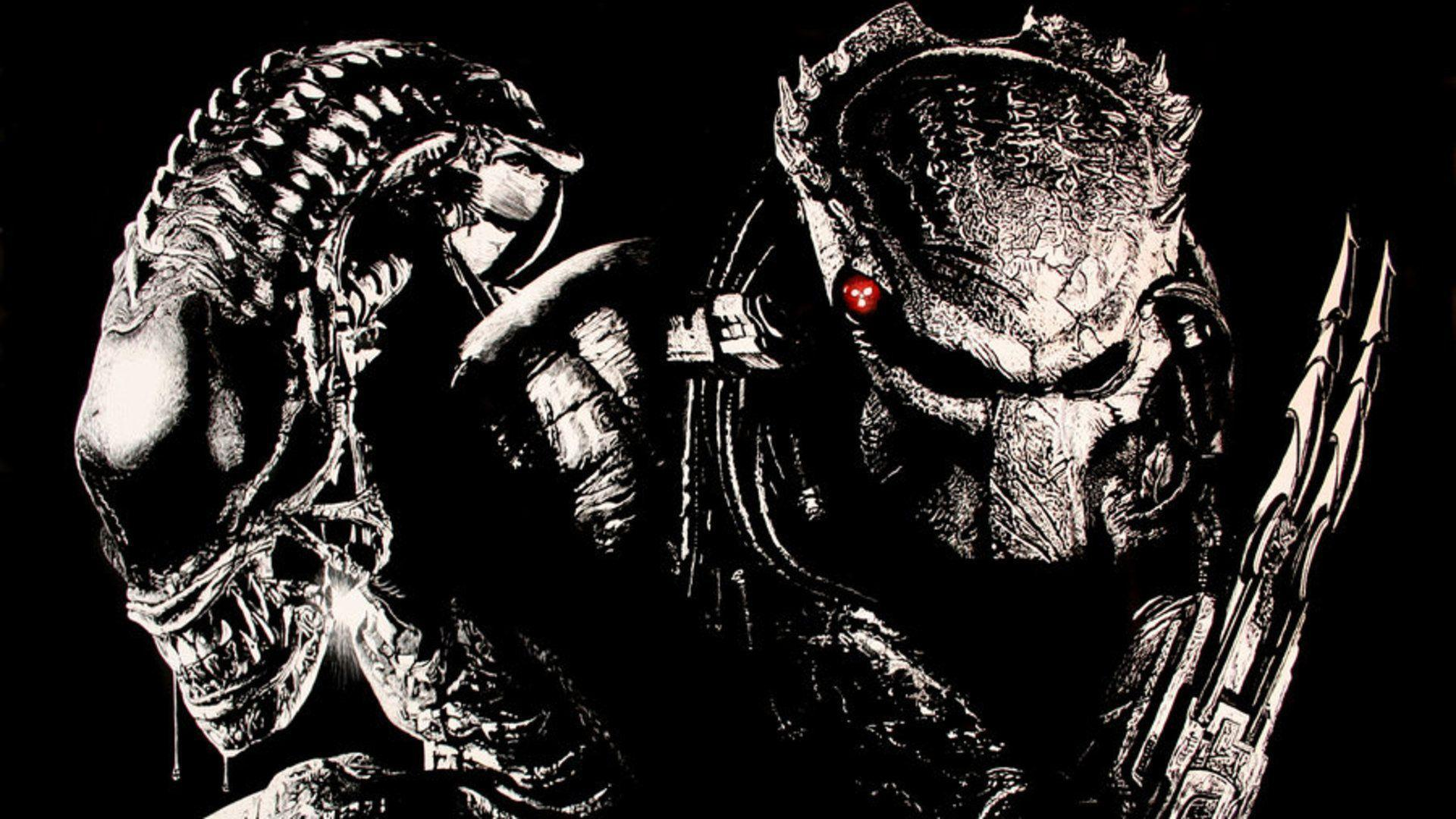 Avp Wallpapers Top Free Avp Backgrounds Wallpaperaccess