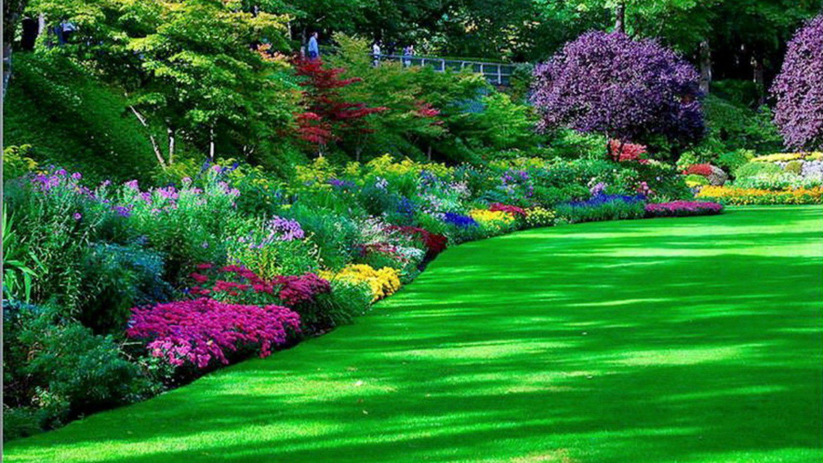 69 Best Free Garden Wallpapers Wallpaperaccess