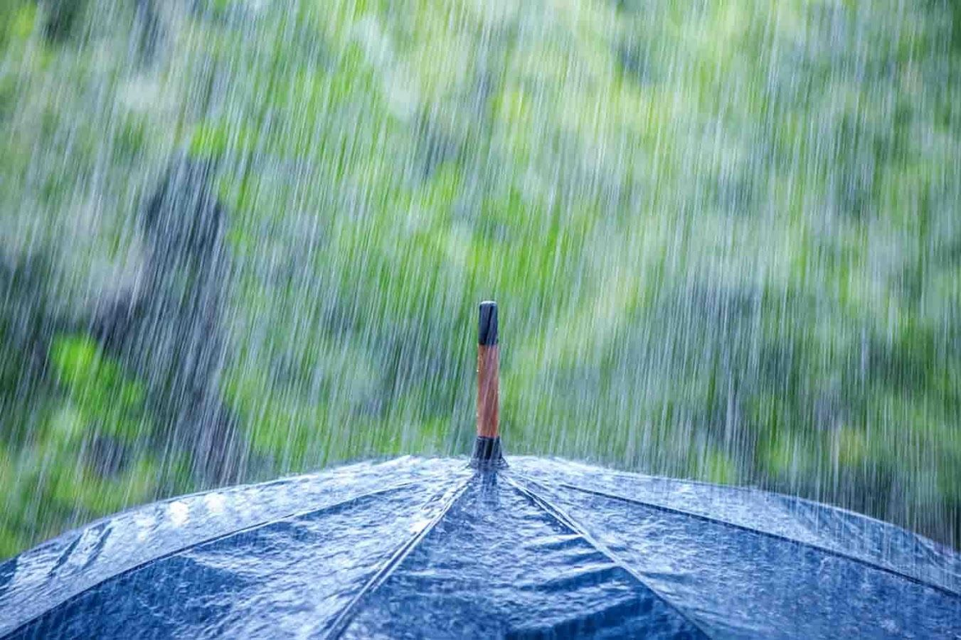 66 Best Free Rain Wallpapers Wallpaperaccess