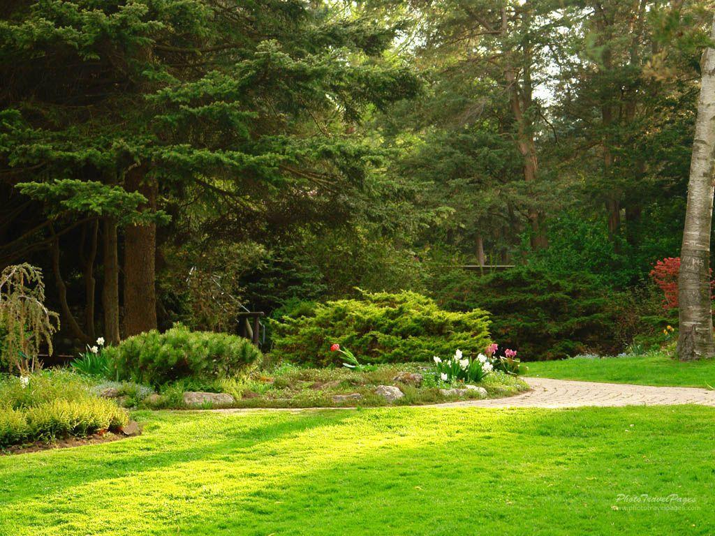 Garden Wallpapers - Top Free Garden Backgrounds